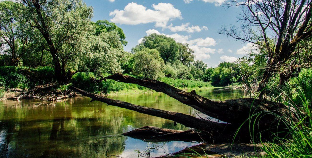 Przyłącz się do akcji Operacja Rzeka