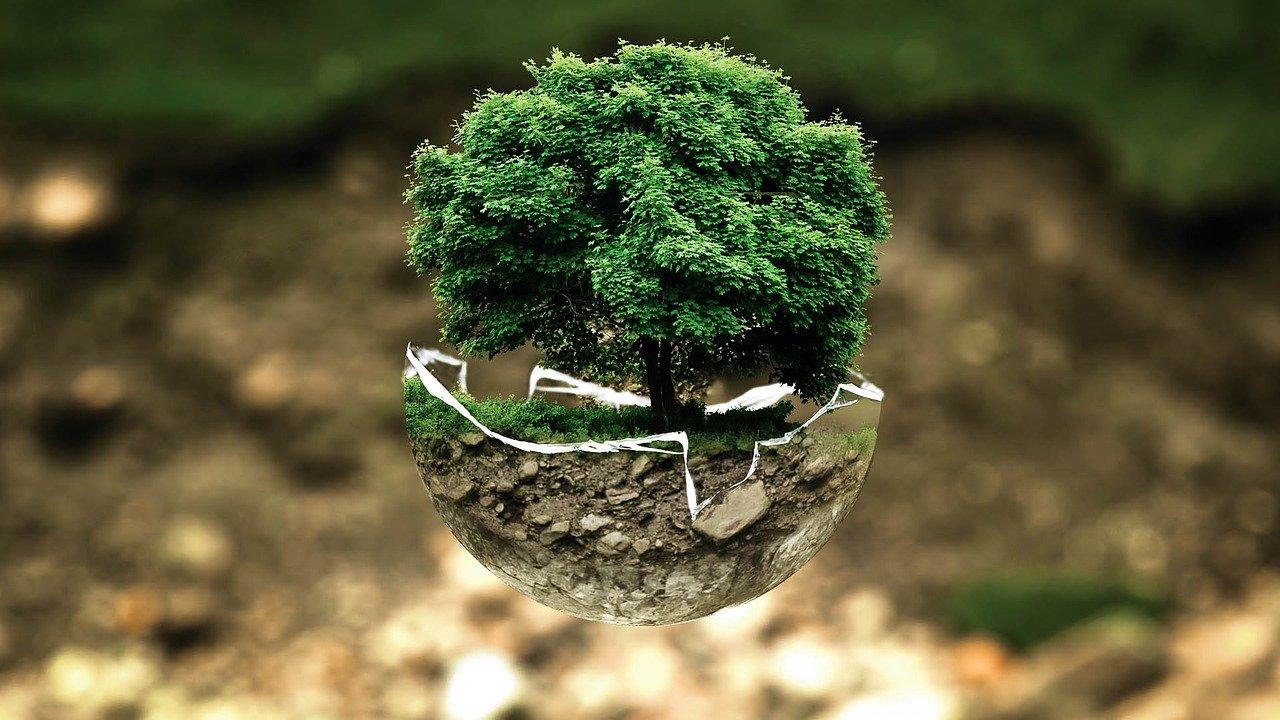 Czy radni zagłosują za ekologią?