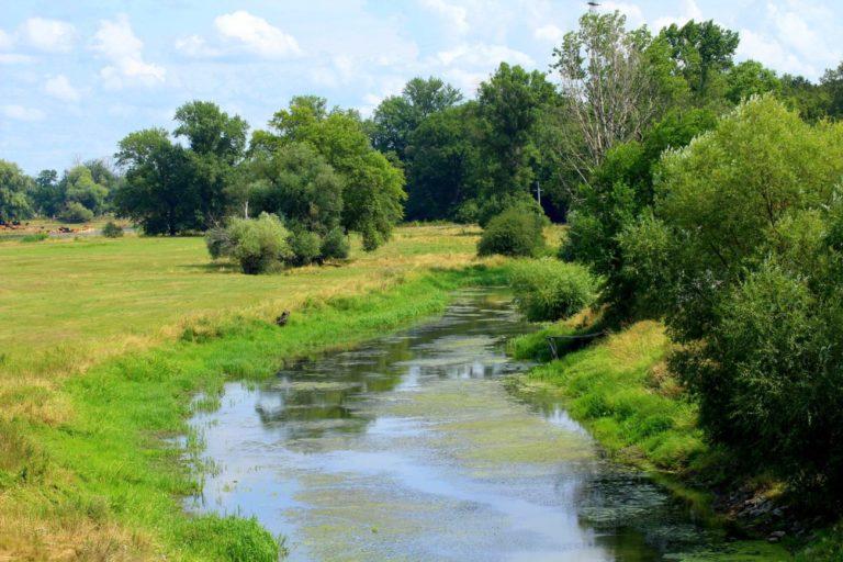 Edwood chce sfinansować budowę zapór na dwóch rzekach
