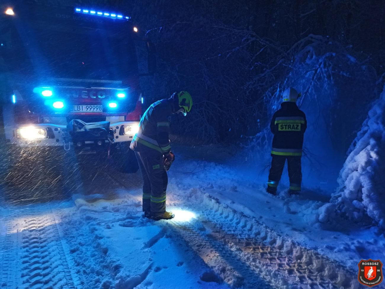 Powalone drzewa i kolizje. Strażacy wyjeżdżali ponad 60 razy