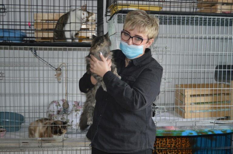 Z pomocą porzuconym kociakom