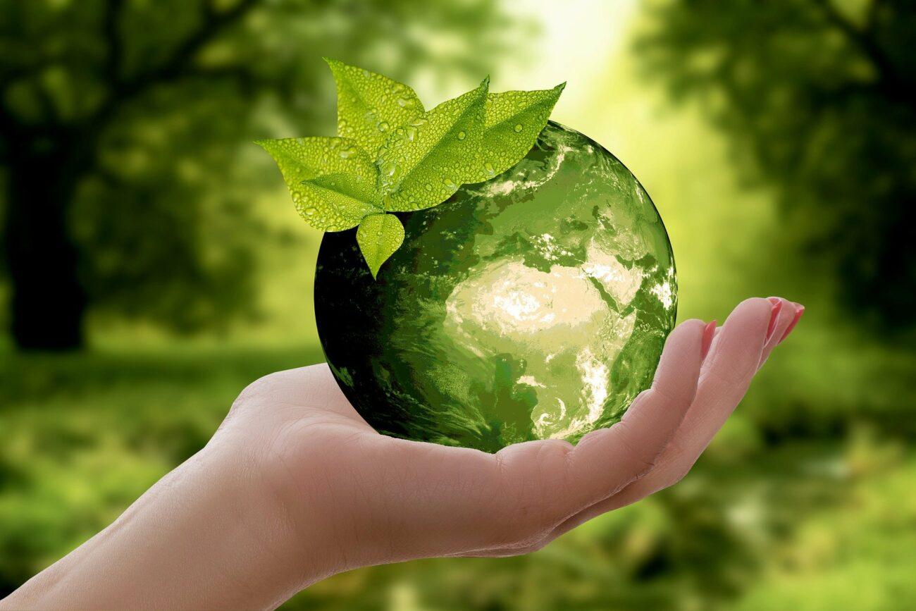 22 kwietnia obchodzimy Dzień Ziemi