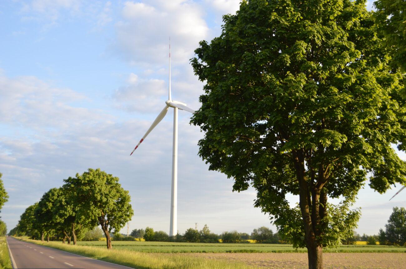 12 wiatraków stanie niedługo w gminie