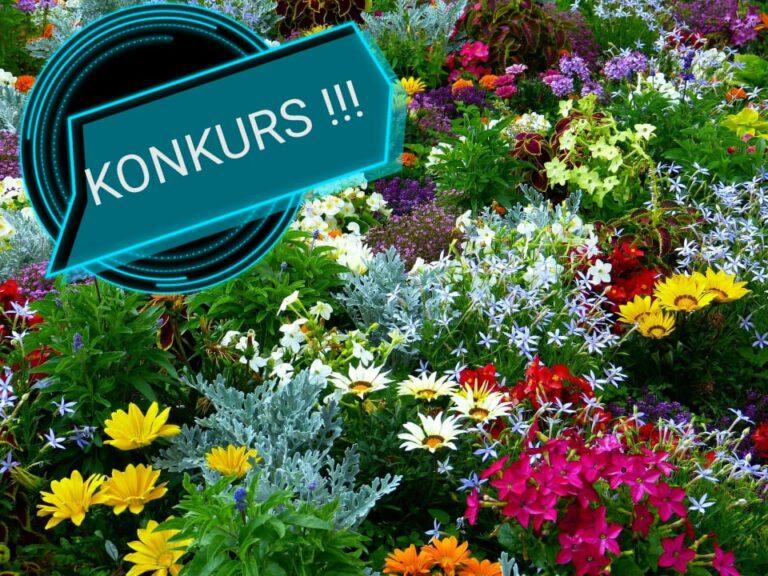 Pokaż nam swój piękny ogród!